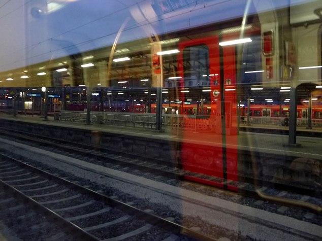 mirror_train