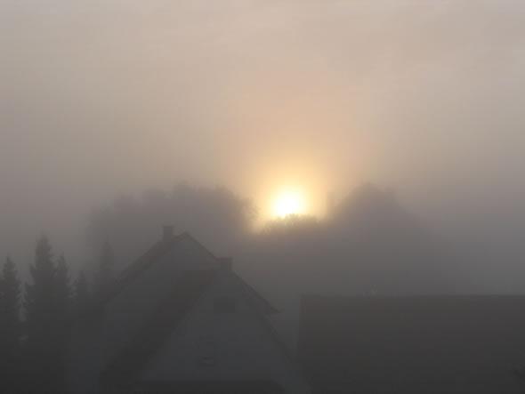 bilder_019_foggy
