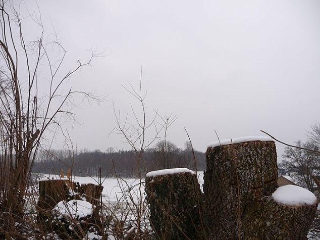 snowday2010