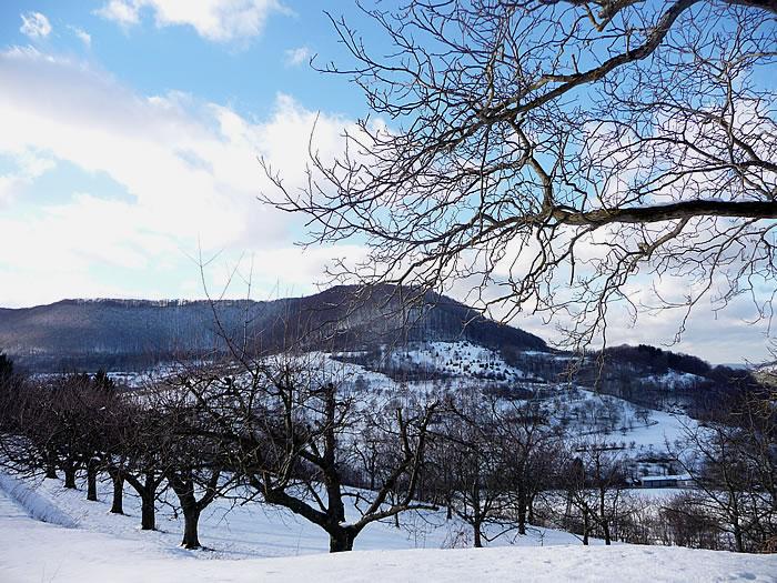 photo_snow