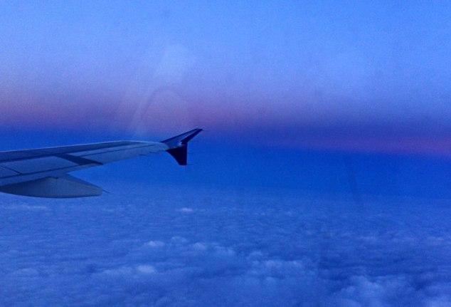 blue_flight