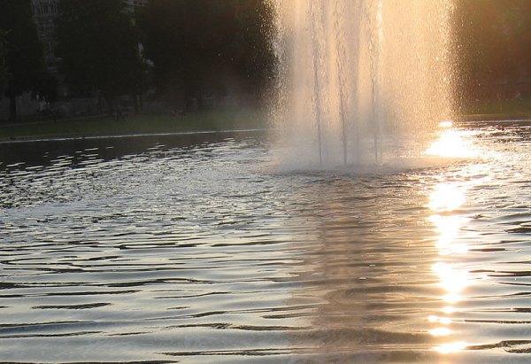 fountain_7-2008