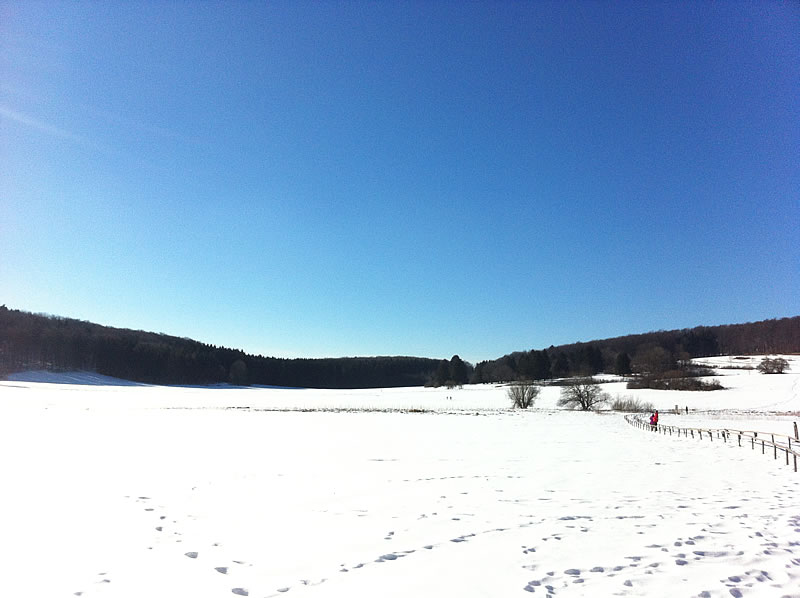 new_snow