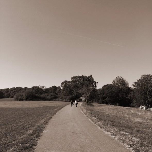 walk06